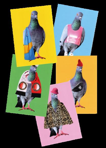 ansichtkaart_vormlust_duiven